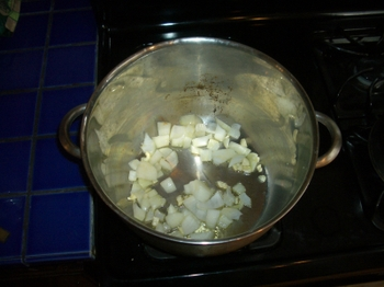 Onion_and_garlic_veg_stock_starte_2